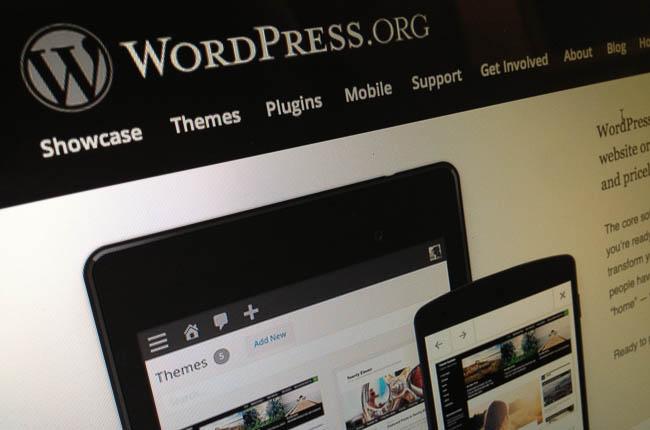 WordPress Screen Pic